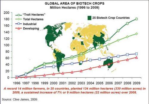Genetically Modified Food Chart